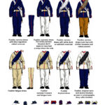 Brazilian-Infantry-small