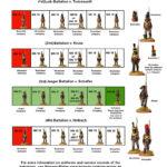 Nassau-Battalions-small-1